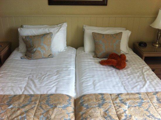 BEST WESTERN Webbington Hotel and Spa: My room