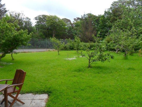 Dromcloc House : The garden my room overlooked