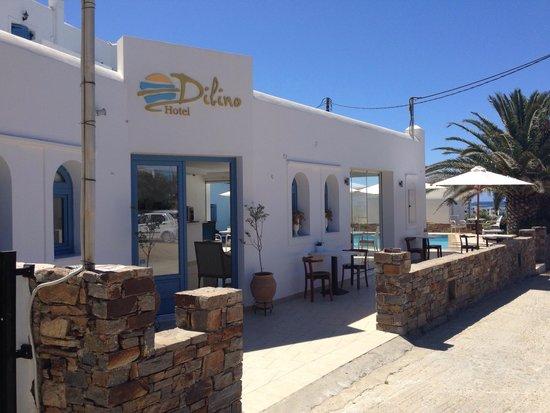 Hotel Dilino & Studios: Reception