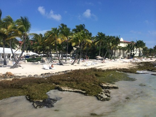 Casa Marina Key West, A Waldorf Astoria Resort: Strand