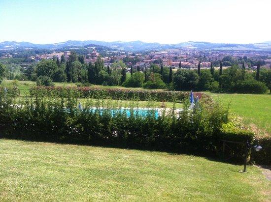 Agriturismo Casale degli Olmi: La piscina