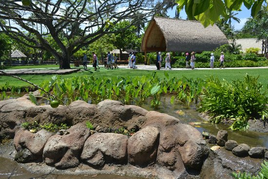 Polynesian Cultural Center : Random Picture