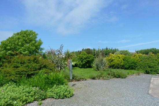 Mull of Galloway Holidays : garden