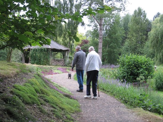 Gooderstone Water Gardens & Nature Trails: Focal points