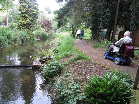 Gooderstone Water Gardens & Nature Trails : Easy walking as you meander round