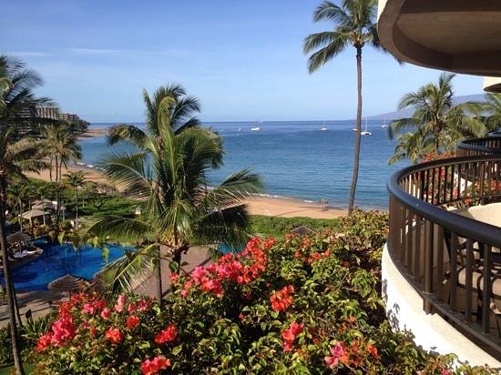 Sheraton Maui Resort & Spa : view from our room
