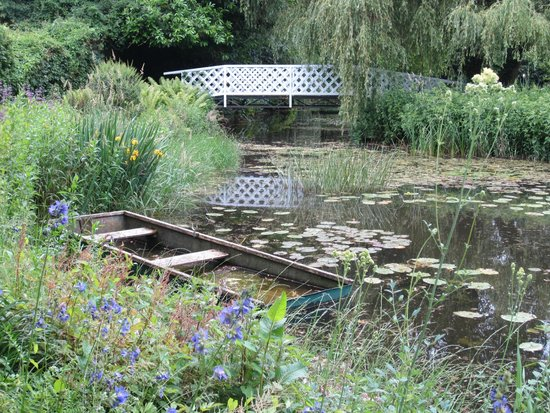 Gooderstone Water Gardens & Nature Trails : Perfect for photographers