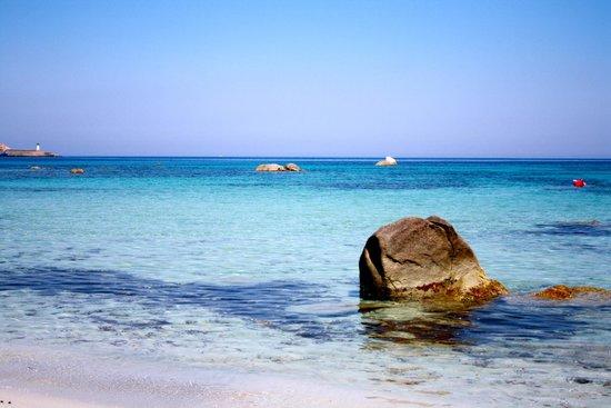 Acula marina : la plage