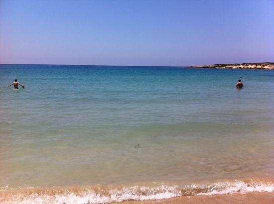 Corallia Beach Hotel Apartments : Beach down from hotel