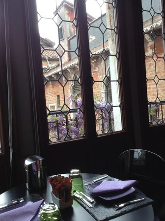 AD Place Venice : Look out onto the wisteria
