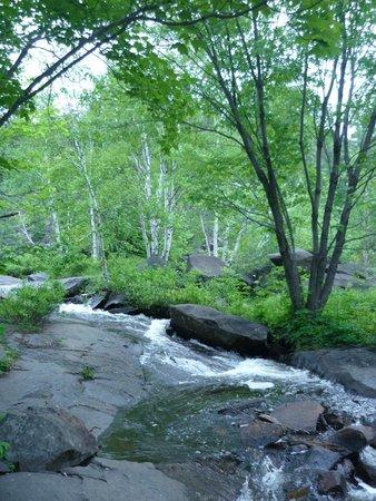 Onaping Falls: beautiful surroundings