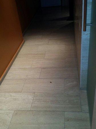 Hyltor Hotel: Cucaracha en SPA al llegar