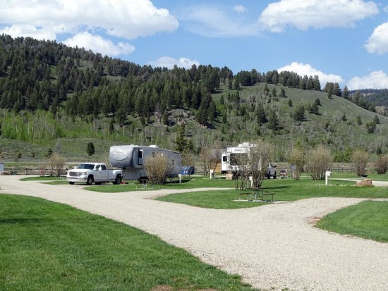 Yellowstone Holiday RV Campground & Marina: Campsites