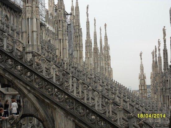 Terrazze del Duomo - Picture of Duomo di Milano, Milan - TripAdvisor
