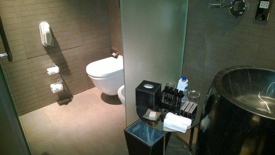 Melia Dubai Hotel: Toilet