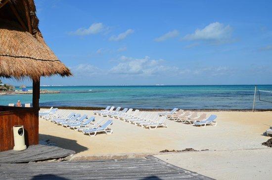 Mia Reef Isla Mujeres : Beach area