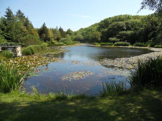 Hilton Court Gardens: View along the lake