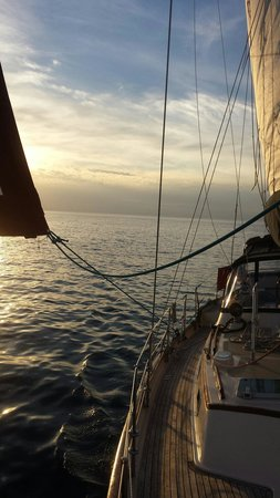 Gypsy Soul Sailboat Charters & Adventures Private Day Tours