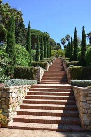 Jardi Botanic Marimurtra : l escalier