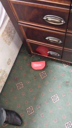 Essex Inn Hotel : Giftbox gegen Ungezifer