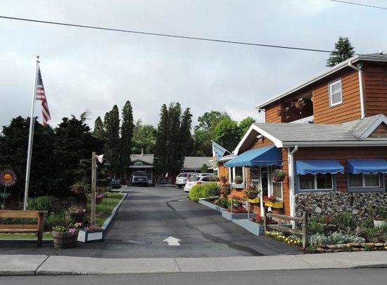 Homestead Inn : View into motel area