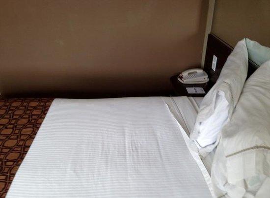 Microtel Inn & Suites by Wyndham Ozark: Queen Bed