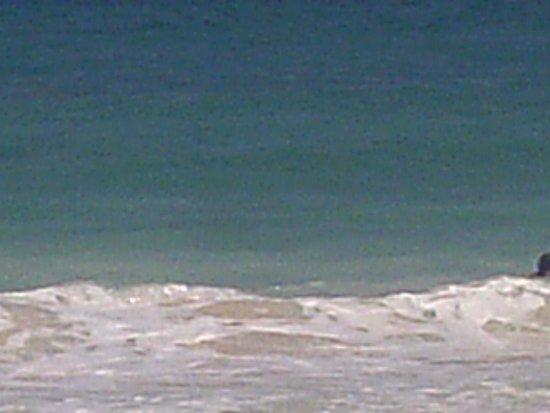 Now Jade Riviera Cancun: Relaxing