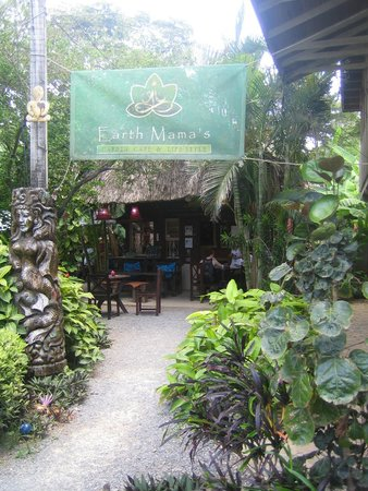 """Earth Mama's Garden Cafe & Lifestyle: Enter the jungle to """"Earth Mama's."""""""