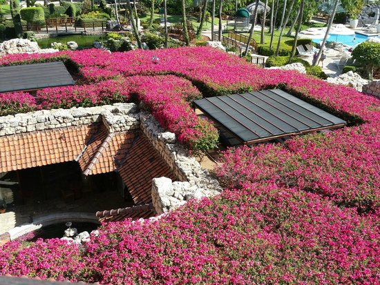 Hyatt Regency Aruba Resort and Casino: View from our room