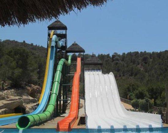 Aqualandia : Some of the slides