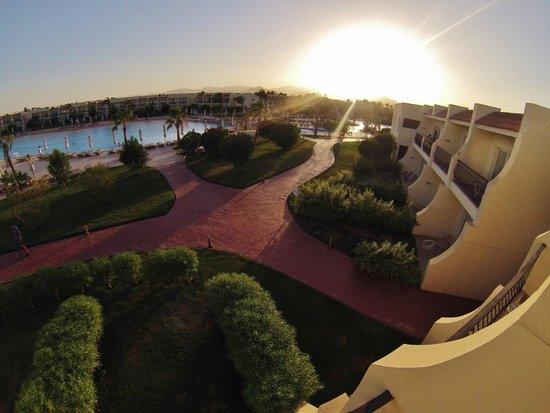 Hilton Sharks Bay Resort: Hotel Grounds