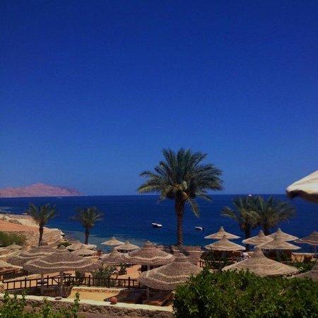 Hilton Sharks Bay Resort: HSB Beach