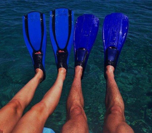 Hilton Sharks Bay Resort: Snorkeling