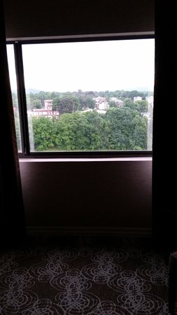 DoubleTree by Hilton Binghamton: The fantastic view from my room