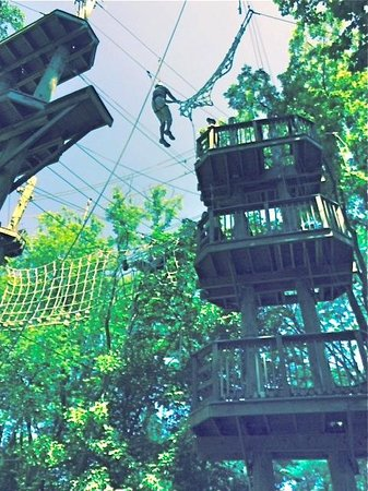 Terrapin Adventures: Terrapin-Ropes Adventure Challenge
