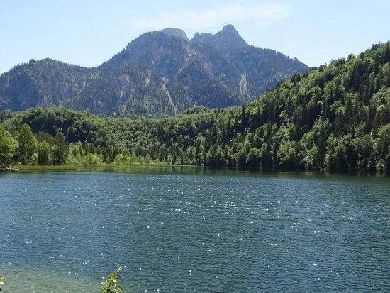 Bus Bavaria Neuschwanstein Castle Tours: Schwansee lake