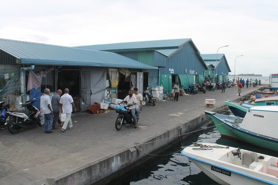 Male Local Market: Food Market in Malé