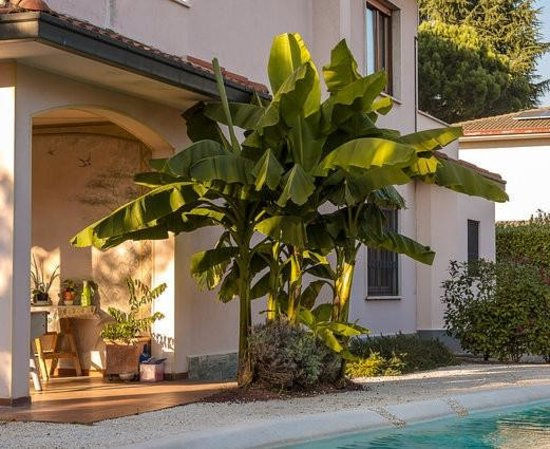 Monza Suite Rentals - Camere e Affitti Brevi: getlstd_property_photo