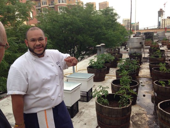 Carnivale: Chef showed us that his vegetables were REALLY local - grown in his rooftop garden. June 12, 201