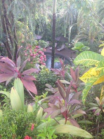 Tulemar Resort : Villa Pool