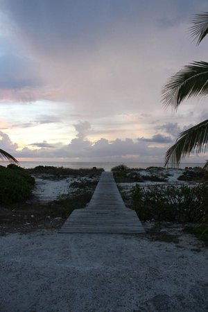Caribbean Paradise Inn: path to beach