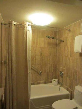 InterContinental Miami: Shower