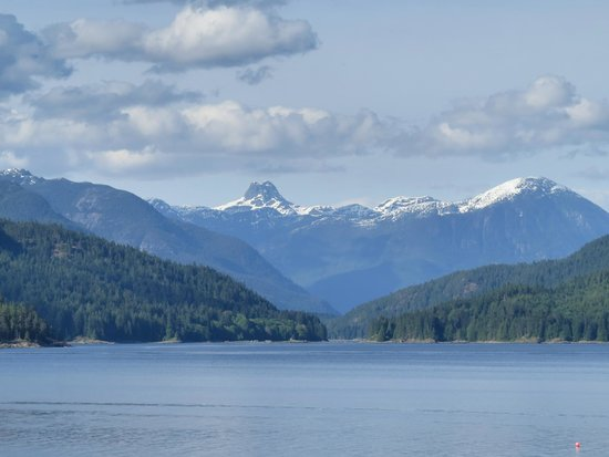 Discovery Islands Lodge: View from lodge