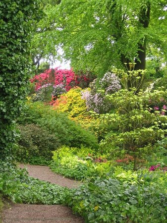 Dorothy Clive Garden: The quarry garden