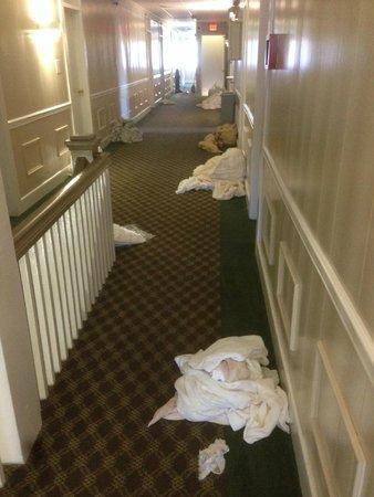 The Admiral Motel : Hallway