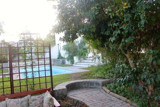 De Doornkraal Historic Country House Boutique Hotel: Pool Area