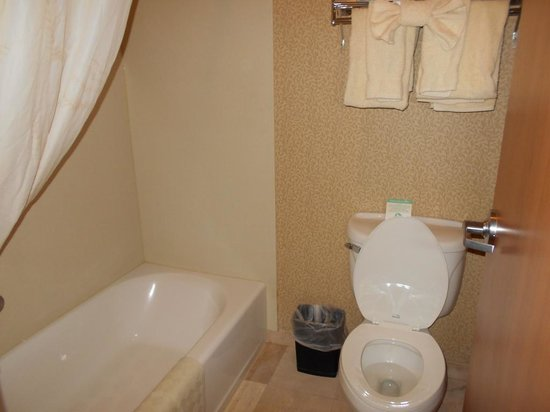 Comfort Inn and Suites: bathroom