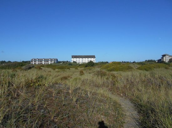 Comfort Inn and Suites : hotel as seen from beach