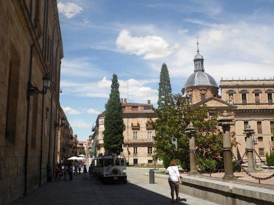 Colegio de Anaya (Palacio de Anaya) : foto1