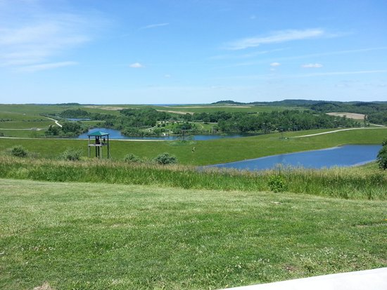 The Wilds: The view while having lunch on the patio